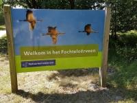 Het Fochteloërveen is een 2500 ha groot natuurgebied op de grens van de Nederlandse provincies Friesland en Drenthe