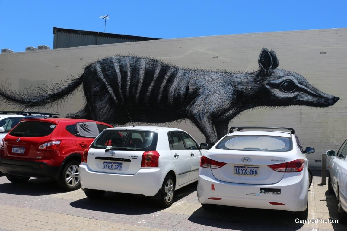 Banksy in Fremantle