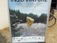 Into Nature-4